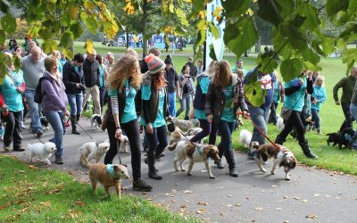 Paws '4' a Walk – 1st October @ Roundhay Park!