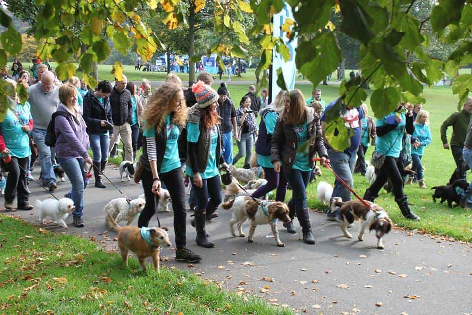 Big Walkies fundraising event at RSPCA Leeds, Wakefield & District Branch.