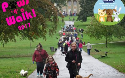 Paws '4' a Walk 2017 – Roundhay Park
